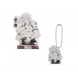 Jujutsu Kaisen Acrylic...